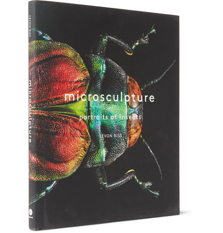 ABRAMS MICROSCULPTURE: PORTRAITS OF INSECTS HARDCOVER BOOK
