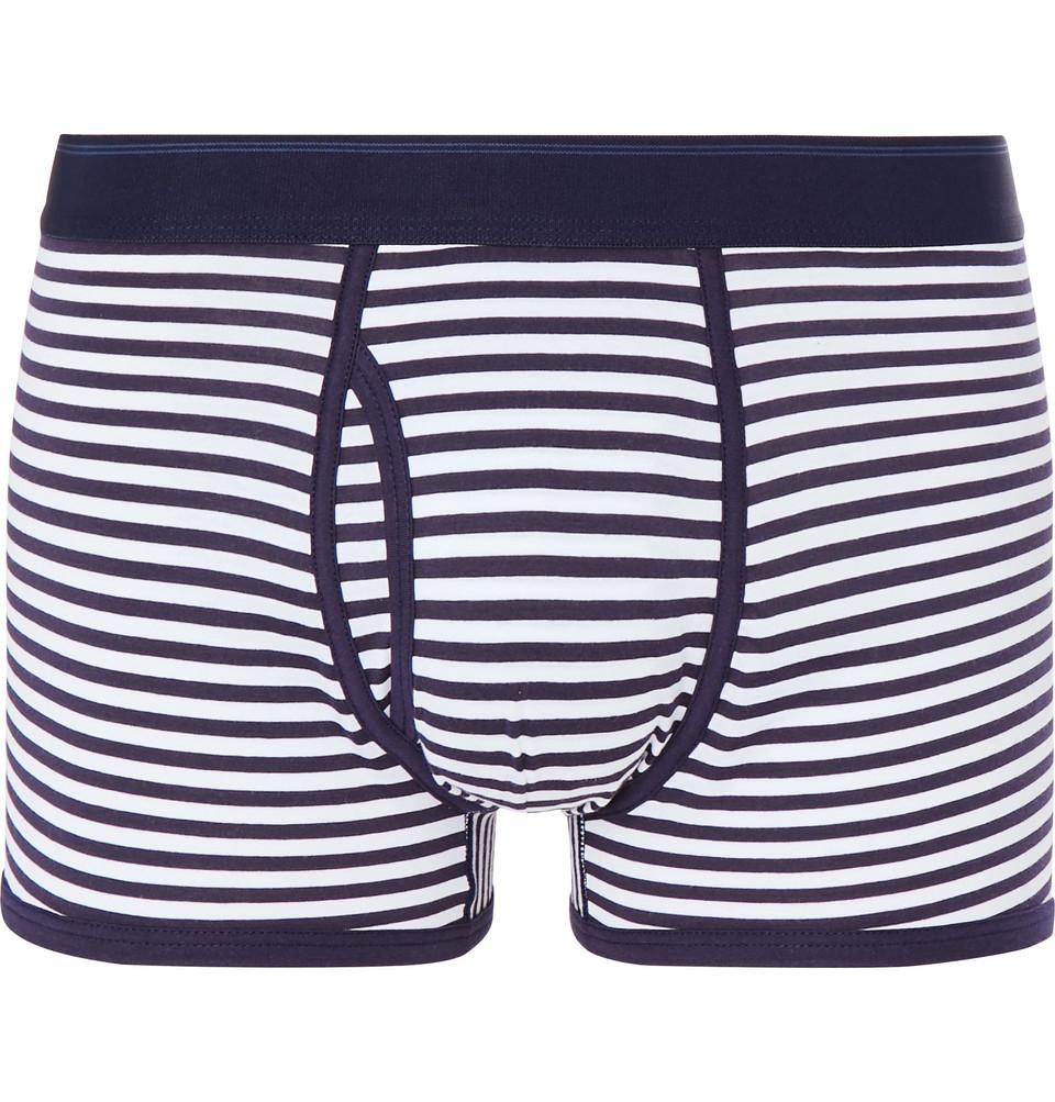 Striped Superfine Cotton Boxer Briefs - Blue