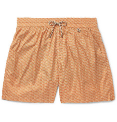 Loro Piana Mid-Length Printed Swim Shorts