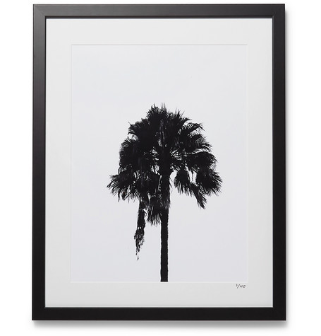 SONIC EDITIONS Framed 2017 Palm Tree Print, 16 in Black
