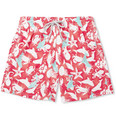 Vilebrequin - Motu Mid-Length Printed Swim Shorts