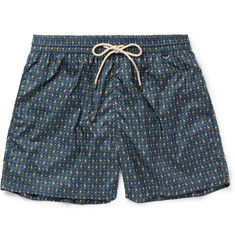 Rubinacci Mid-Length Monkey-Print Swim Shorts