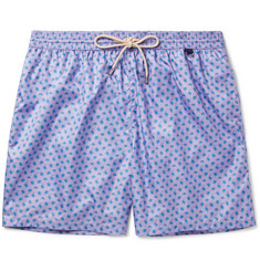 Rubinacci Mid-Length Turtle-Print Swim Shorts