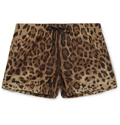 Dolce & Gabbana Slim-Fit Short-Length Leopard-Print Swim Shorts