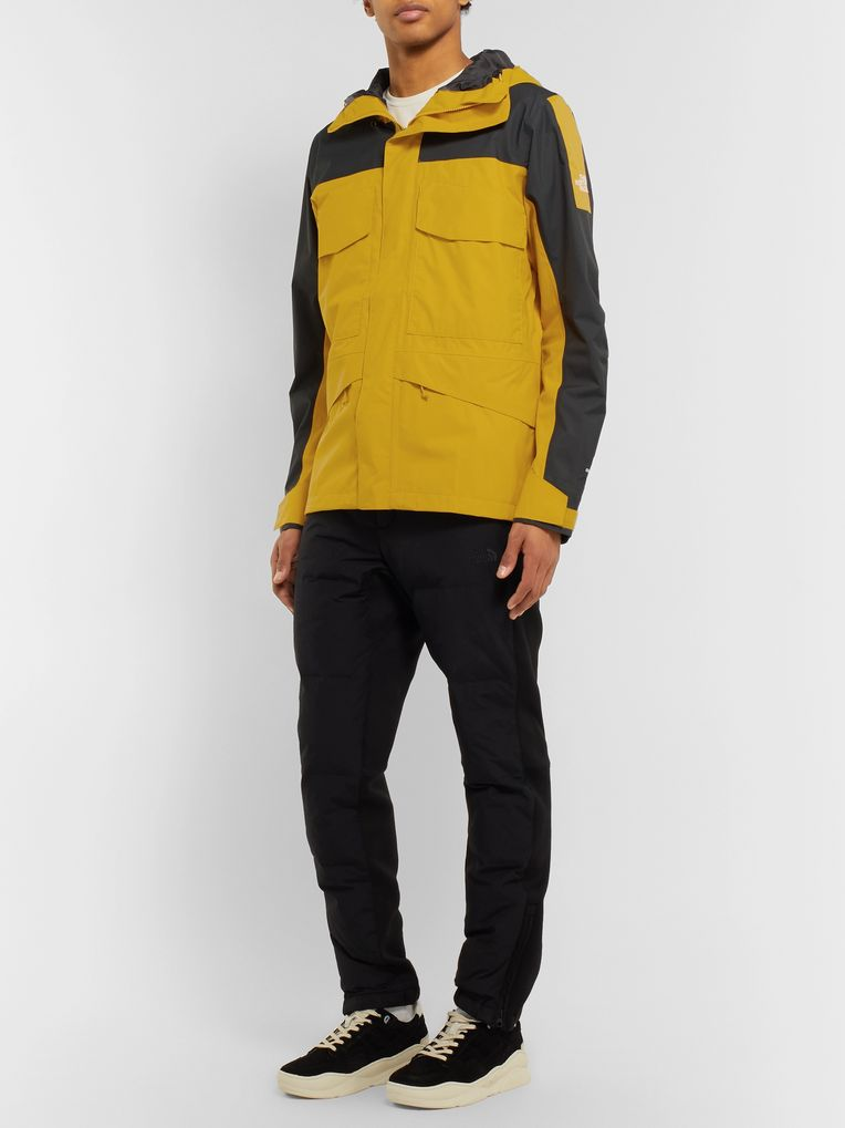 The North Face Fantasy Ridge GORE-TEX Hooded Coat