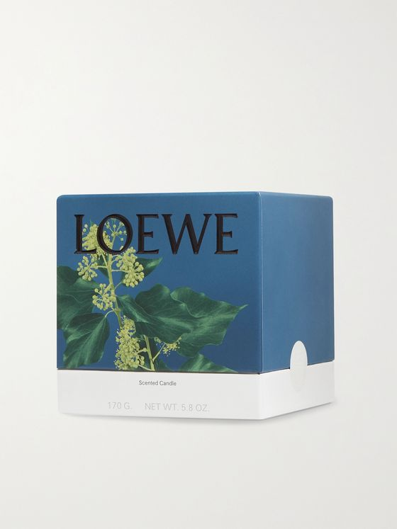 LOEWE HOME SCENTS Ivy Scented Candle, 170g