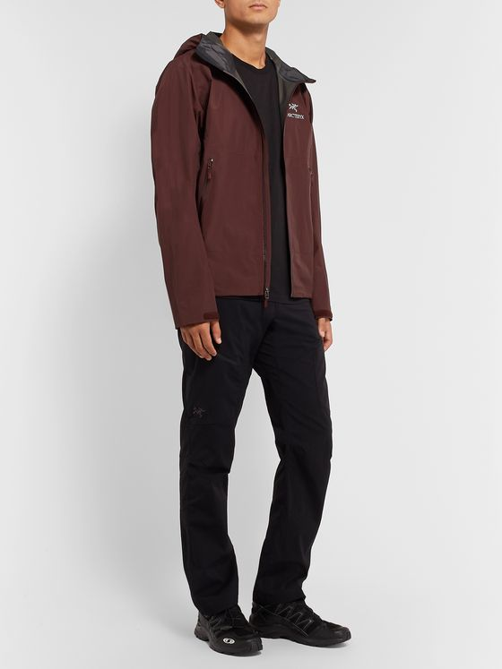 Arc'teryx Zeta SL GORE-TEX Hooded Jacket